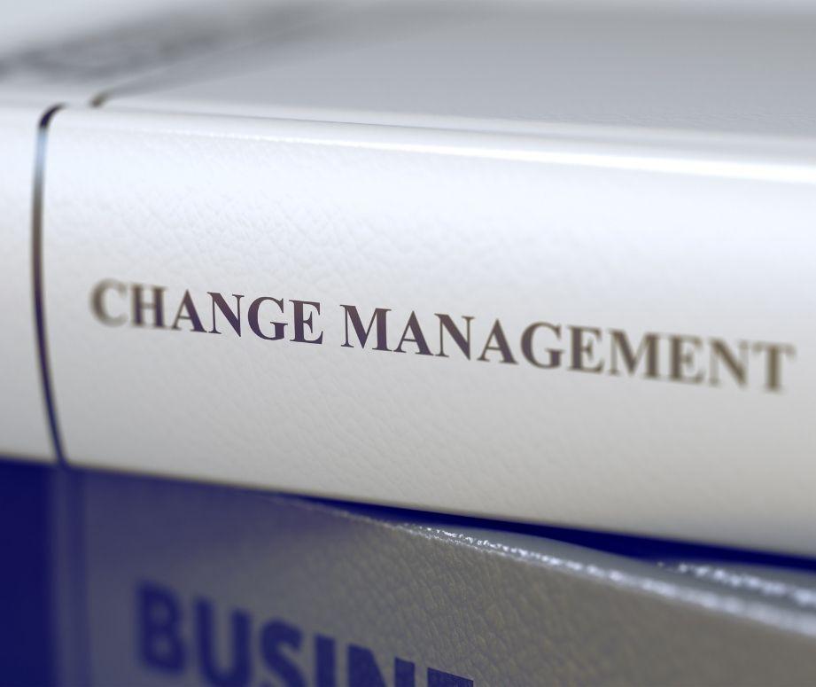 change management business coaching